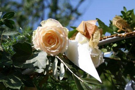 fuhr 074 472x315 - Marina & Frank im Garten des St. Annen Hauses Goslar