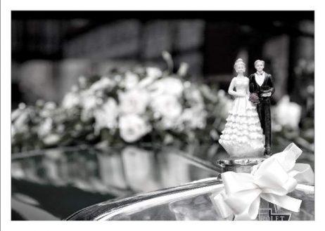 hoa 015 kopie 462x329 - Isabel und Sebastian im Garten des Waldhaus Osterwieck