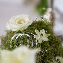 hzj 004 kopie 253x253 - Sina und Tino auf ihrer grünen Hochzeitsinsel - Hildesheimer Haus Buntenbock