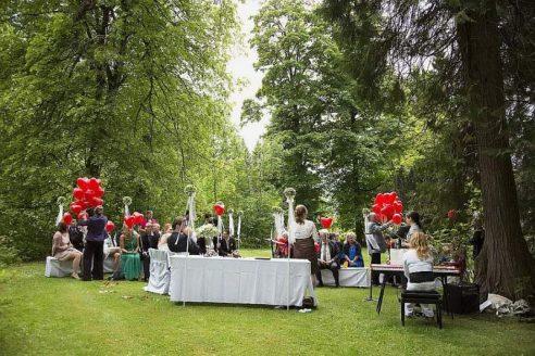 hzj 123 kopie 492x328 - Sina und Tino auf ihrer grünen Hochzeitsinsel - Hildesheimer Haus Buntenbock