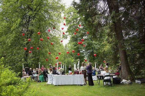 hzj 131 kopie 492x328 - Sina und Tino auf ihrer grünen Hochzeitsinsel - Hildesheimer Haus Buntenbock