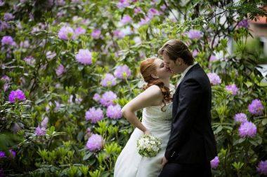 hzj 209 kopie 380x253 - Sina und Tino auf ihrer grünen Hochzeitsinsel - Hildesheimer Haus Buntenbock