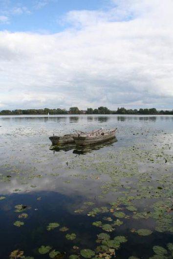 img 0436 354x531 - Sonja und Alex - Ein wunderschöner Spätsommertag am Seeburger See | Graf Isang