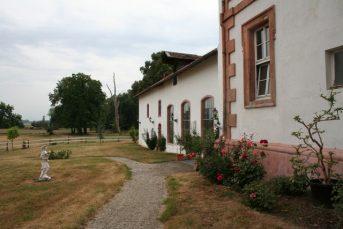 stein 051 343x229 - Das Rittergut Dorstadt