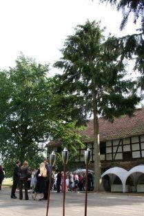 stein 059 209x313 - Das Rittergut Dorstadt
