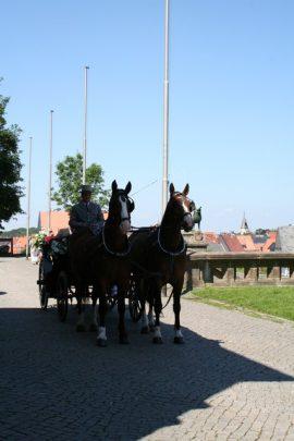 welge 200 270x405 - Sara und Benjamin in der historischen Kaiserpfalz zu Goslar