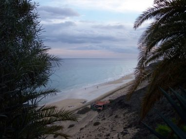 zurawski 019 382x286 - Milena und Stefan auf Fuerteventura