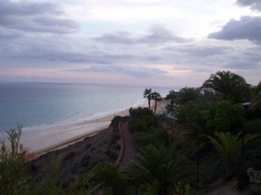 zurawski 025 382x286 - Milena und Stefan auf Fuerteventura