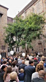 Elke Rott - Die Zeremonie - Freie Trauungen - Kassel