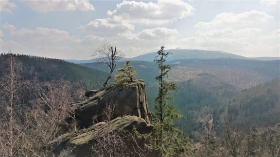 Elke Rott - Die Zeremonie - Freie Trauungen - Harz
