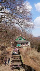 Elke Rott - Die Zeremonie - Freie Trauung - Harz Gebirge Wanderfreunde