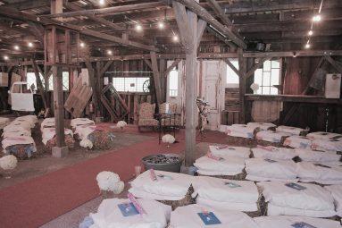 Elke Rott - Die Zeremonie - Freie Trauung - Goslar