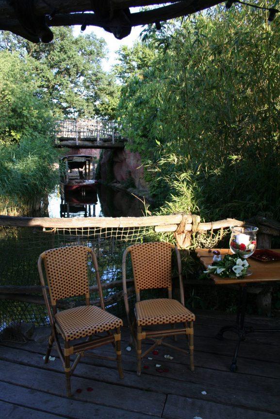 Elke Rott - Die Zeremonie - Freie Trauung - Zoo Hannover