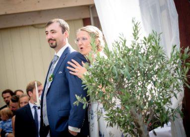 Hochzeit 2033 382x276 - Lavinia & Marius in Goslar