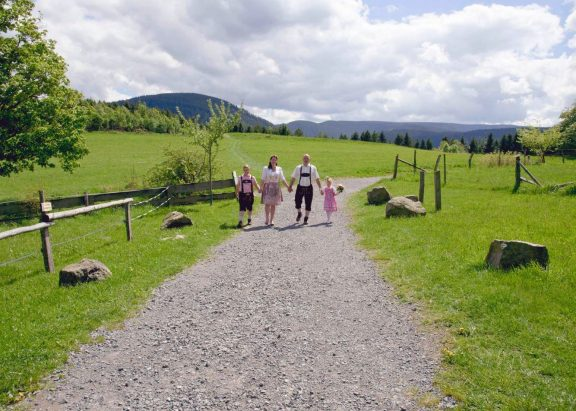 elke rott freie trauung hochzeit harz berge goslar147 576x411 - Verliebt in die Berge - Ela und Maik